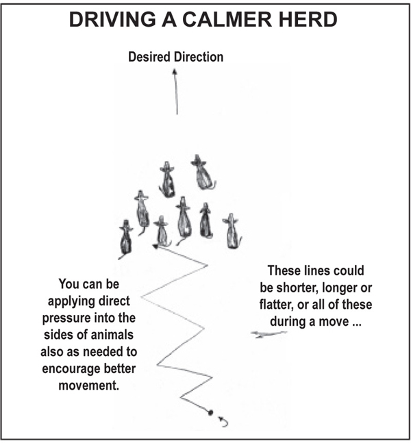 Diagram of driving a calmer herd
