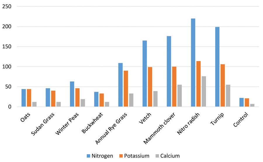 Graph of nutrients from cover crops