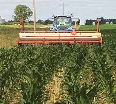 Grant modified his planter to place two rows of cover crop seeds between each 30-inch corn row.